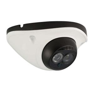 Camara tipo domo, Sensor CMOS 1/3, 900TVL, 1 LED Array, 15m IR, IR-CUT